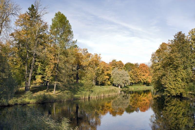 Les arbres d'automne s'approchent du fleuve photographie stock