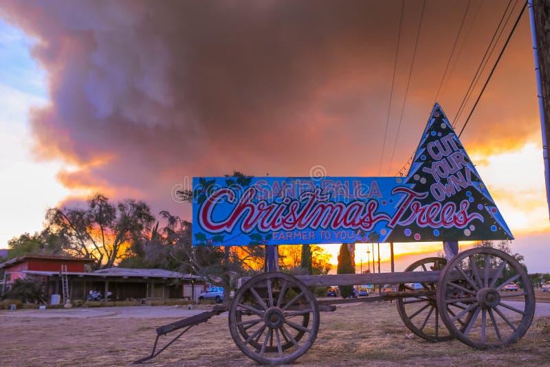 Les arbres de Noël signent devant la fumée du feu de forêt de la Californie, conduit photographie stock libre de droits