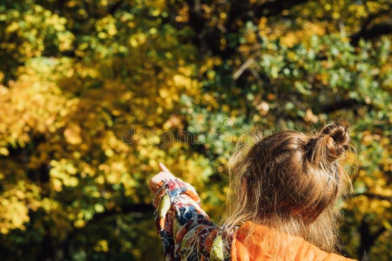Les arbres defocused de fille de forêt d'automne tombent fond image libre de droits