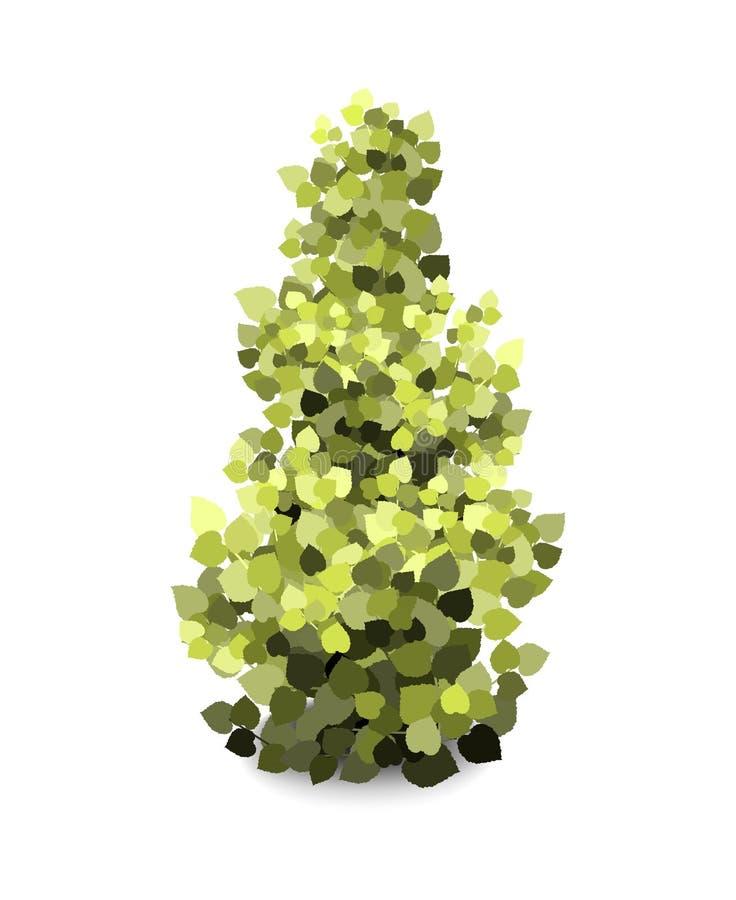 Les arbres du jardin Icônes de végétation des arbres du jardin vert illustration de vecteur