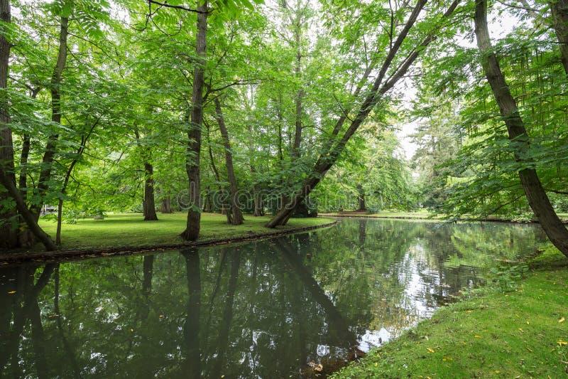 Les arbres et la rivière luxuriants chez l'Oliwa se garent image stock