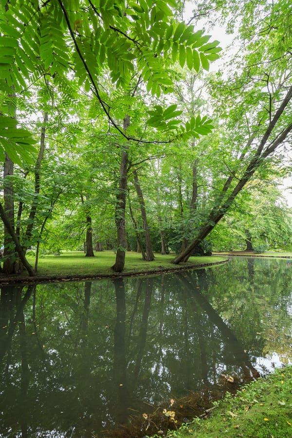 Les arbres et la rivière luxuriants chez l'Oliwa se garent images stock