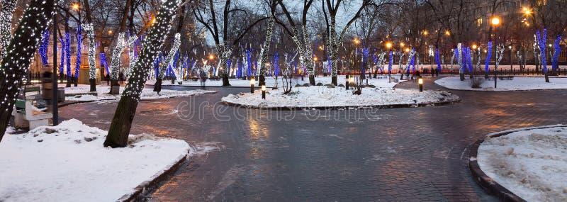 Les arbres ont illuminé aux vacances de Noël et de nouvelle année images stock