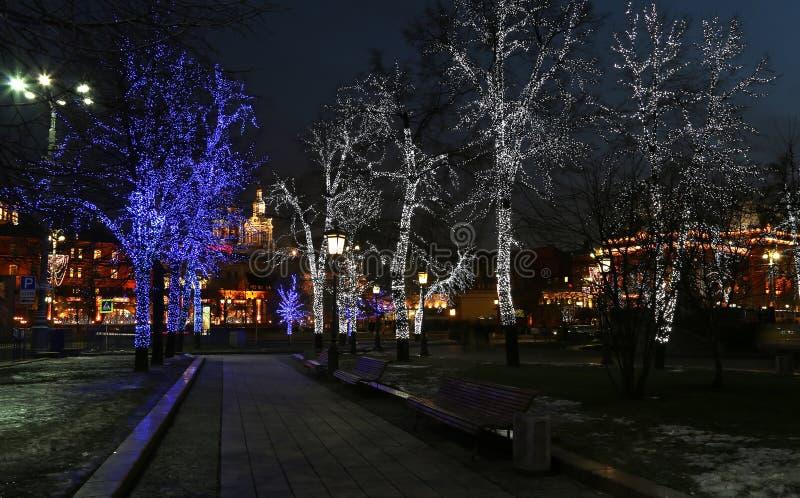 Les arbres ont illuminé aux vacances de Noël et de nouvelle année la nuit à Moscou, Russie photo stock