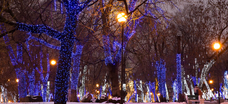 Les arbres ont illuminé aux vacances de Noël et de nouvelle année la nuit à Moscou, Russie images stock
