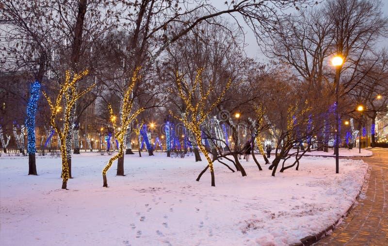 Les arbres ont illuminé aux vacances de Noël et de nouvelle année la nuit à Moscou, Russie photo libre de droits