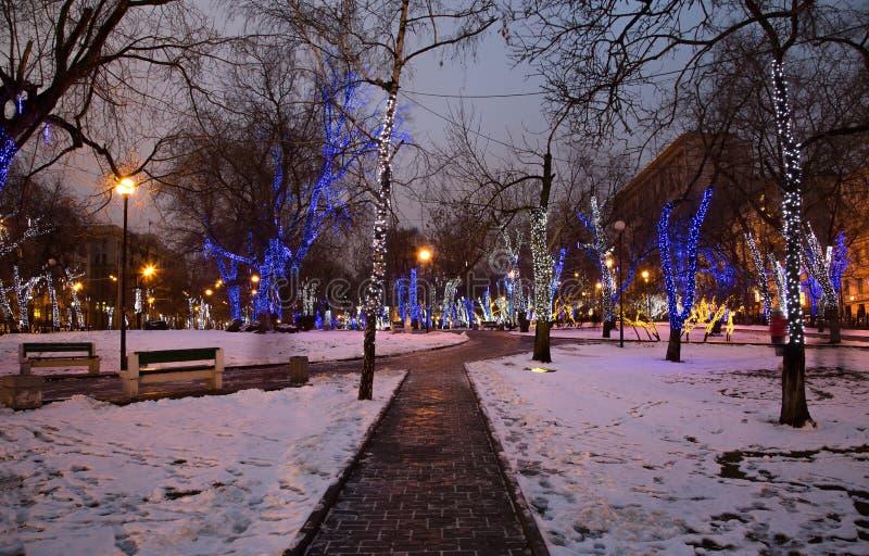 Les arbres ont illuminé aux vacances de Noël et de nouvelle année la nuit à Moscou, Russie photos libres de droits