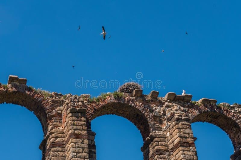 Les archs de l'aqueduc à Mérida image stock