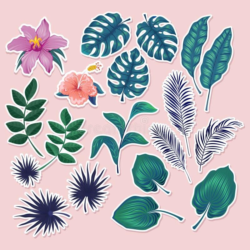 Les autocollants et les labels tropicaux mignons rougissent dessus fond rose Ensemble d'été de feuilles et de fleurs illustration libre de droits