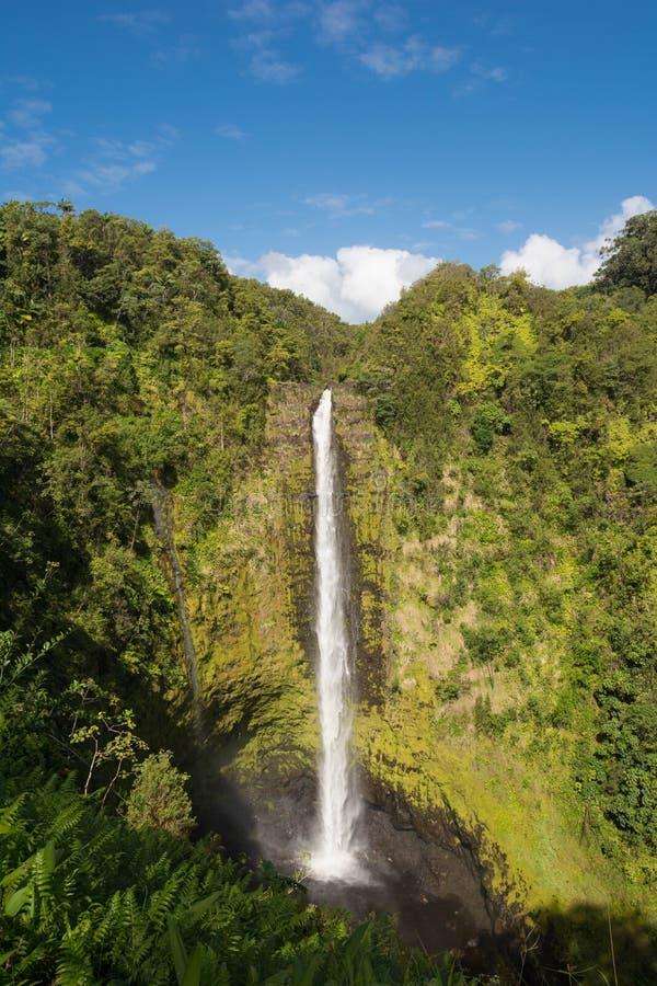 Les automnes d'Akaka, Hawaï images libres de droits