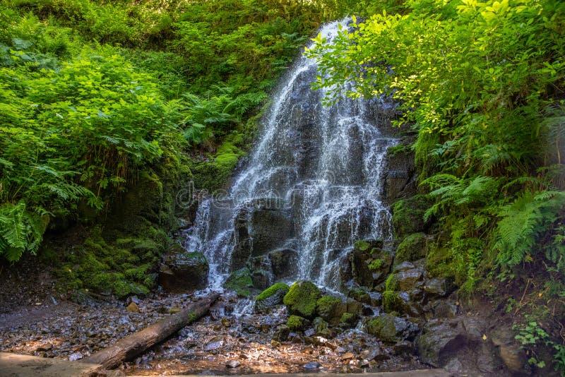 Les automnes féeriques des chutes de Wahkeena traînent, gorge du fleuve Columbia, Orégon photographie stock