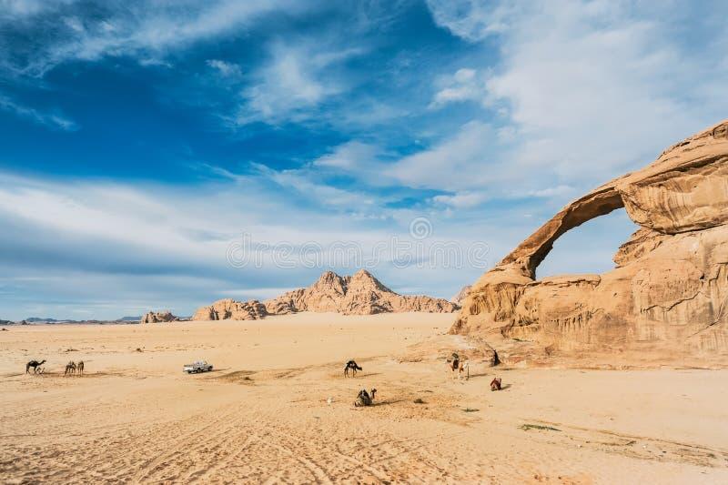 Les bédouins avec des chameaux ont un repos dans le beau paysage incroyable dans le désert jordanien photos libres de droits