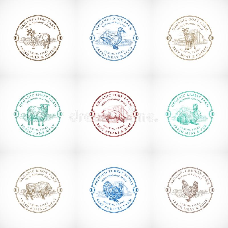 Les bétail et la ferme avicole organiques ont encadré de rétros insignes ou Logo Templates Set Animaux domestiques et ferme tirés illustration libre de droits