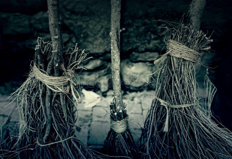 Les balais de sorcière détaillent photographie stock