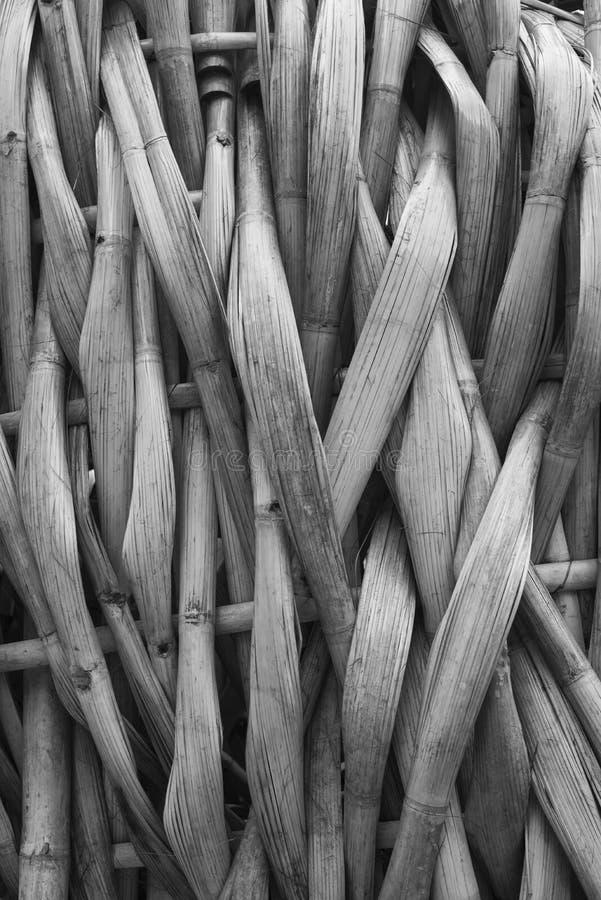 Les bambous aplatis ont piqué ensemble image stock