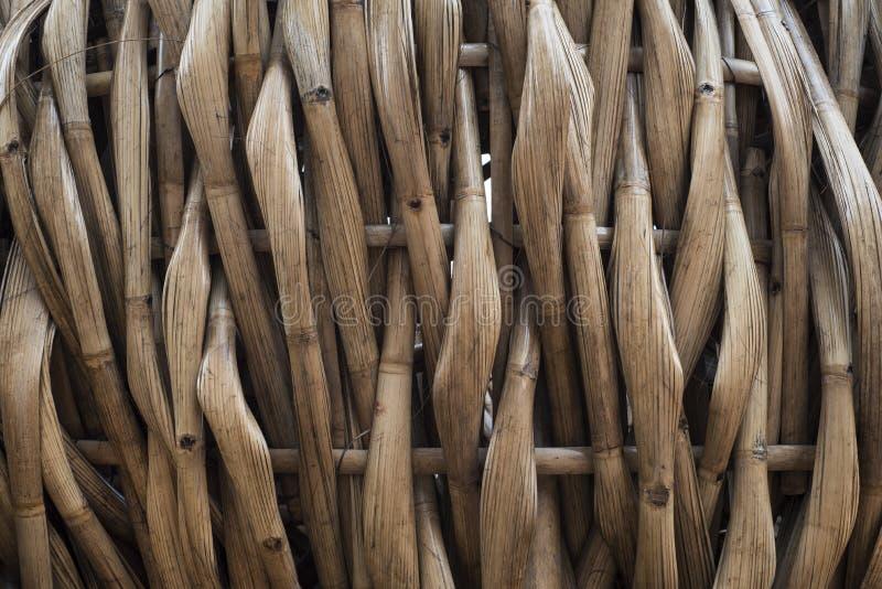 Les bambous aplatis ont piqué ensemble photographie stock libre de droits