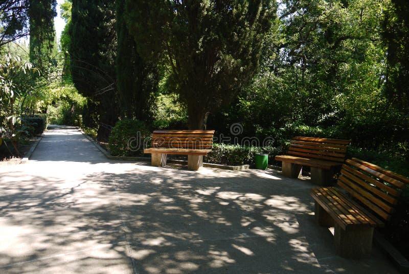 Les bancs en bois en parc dans un endroit pittoresque confortable à la nuance des arbres à côté du chemin est un bon endroit à dé photos libres de droits