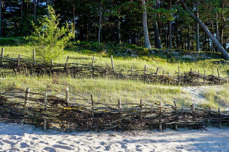 Les barrières en osier sur la plage pour la détention du mouvement de sable et de la réduction de l'homme ont fait des effets photographie stock libre de droits