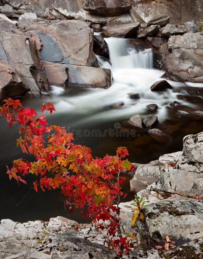 Les bassins, couleur d'automne image libre de droits