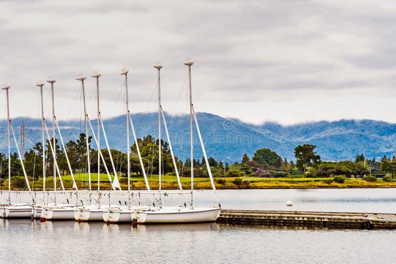 Les bateaux ? voile de location ont align? sur un pilier dans la r?gion de San Francisco Bay du sud, le lac shoreline et le parc  photos stock