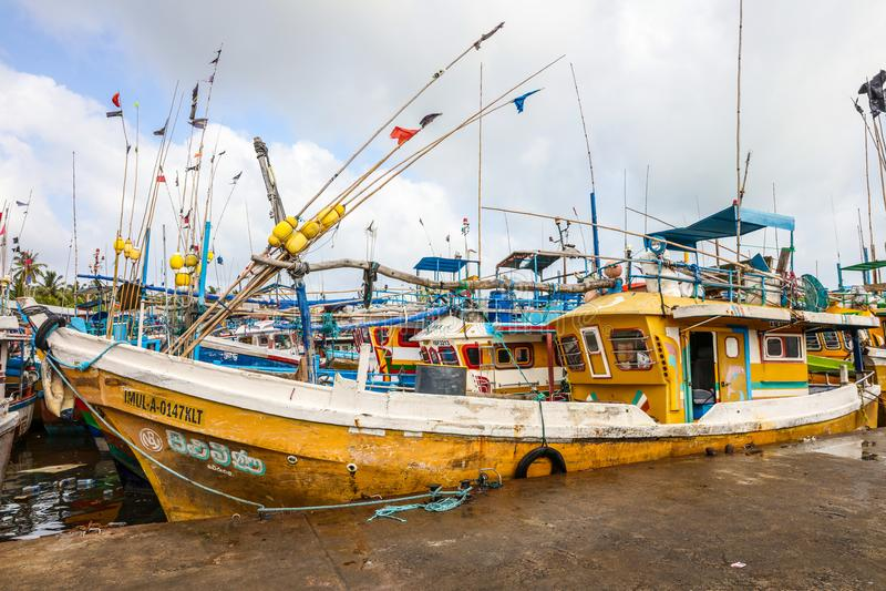 Les bateaux de pêche se tiennent dans le port de Beruwala, Sri Lanka photographie stock libre de droits