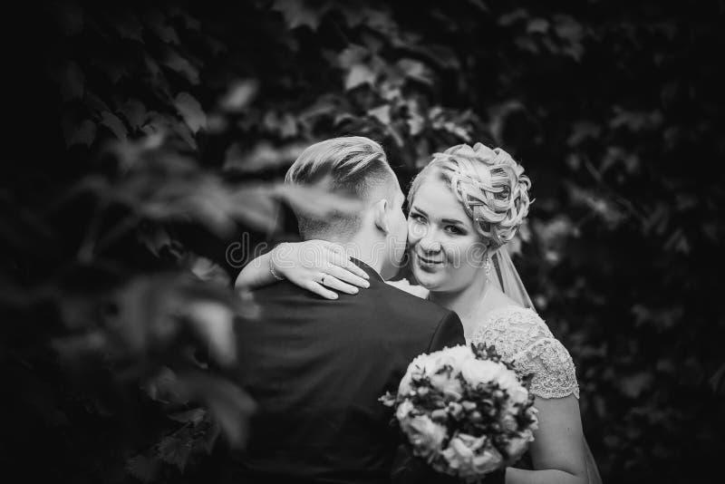 Les beaux jeunes couples de photographie blanche noire se tiennent sur la forêt de fond photographie stock libre de droits