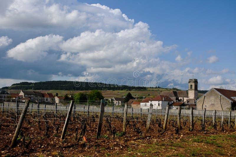 Download Les Beaux Vignobles à Beaune Cote De Beaune Où Le Vin Est Photo stock - Image du français, rural: 76079584
