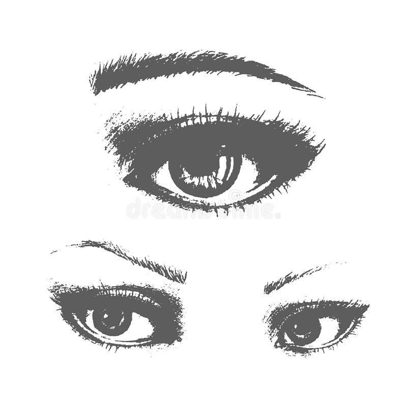 Les beaux yeux de femme dirigent le dessin d'encre Illustration Ensemble noir de blanc illustration de vecteur