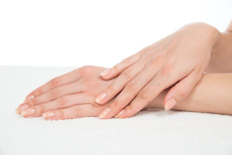 Les belles mains de femme avec la manucure française cloue I images stock