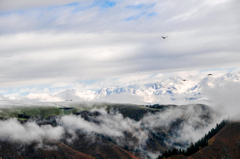 Les belles montagnes de Tianshan sont dans le Xinjiang, Chine photographie stock libre de droits