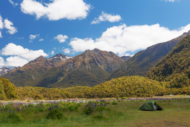 Les belles montagnes et la tente du tramper dans le ressortissant de Fiordland Par photos stock