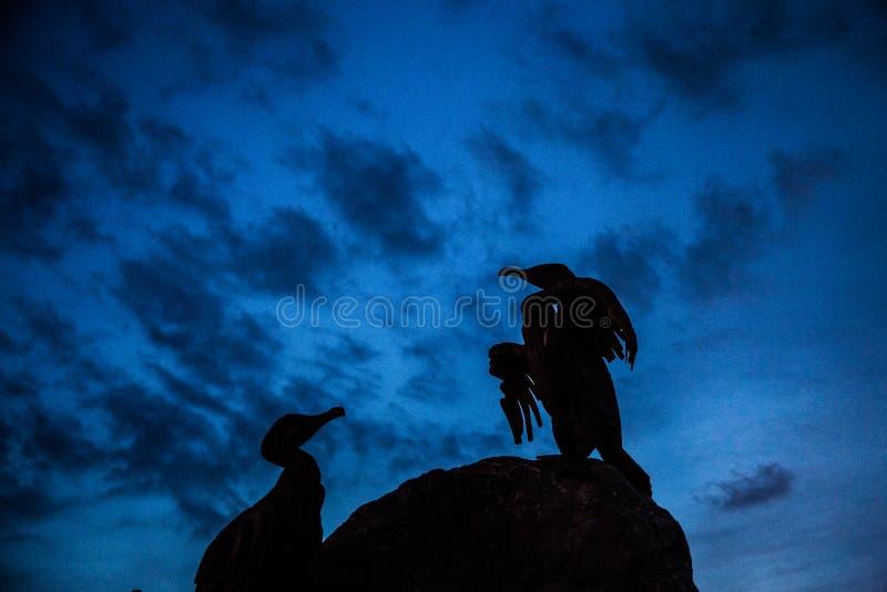 Les belles statues d'un oiseau sur Morecambe marchent images stock