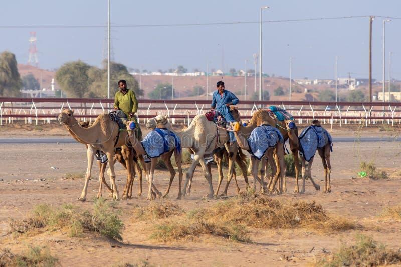 Les bergers de chameau marchent par la voie de course photographie stock