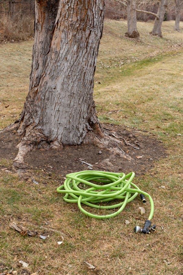 Les besoins de arrosage de pelouse d'hiver photographie stock libre de droits