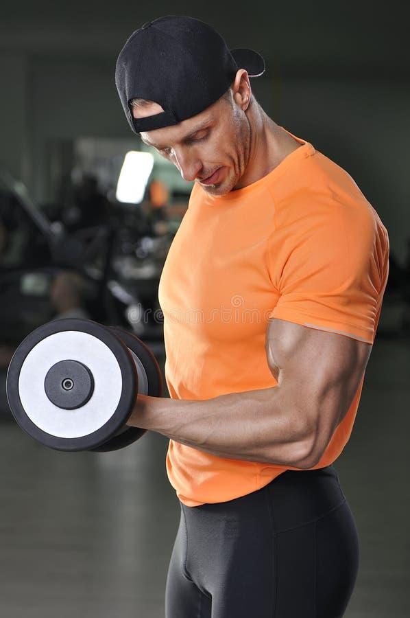 Les biceps de exécution d'homme sportif puissant bel s'exercent avec l'haltère photographie stock libre de droits