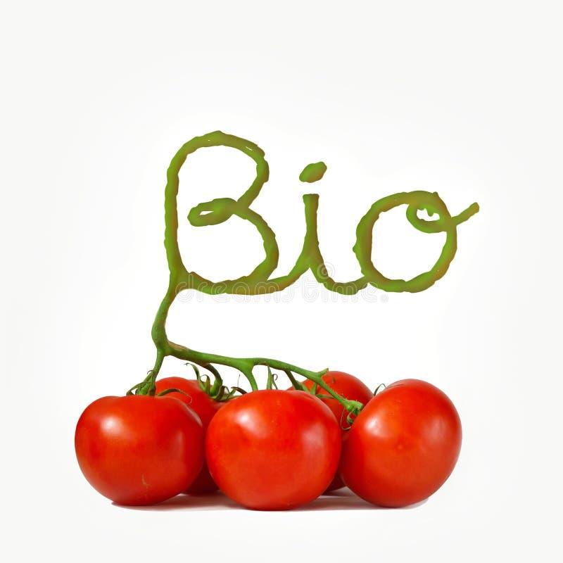 Les bio tomates fraîches d'isolement sur le blanc de tige ont formé l'inscription bio images stock