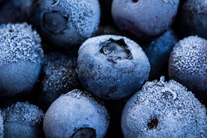 Les bleuets congelés en arrière-plan. Des fruits biologiques sains. Antioxydant naturel. Fermer photo libre de droits