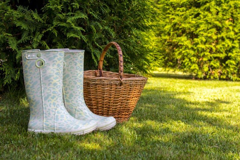 Les bottes en caoutchouc blanches et le panier en osier se tiennent sur la clairière verte dans la forêt ensoleillée d'été photographie stock