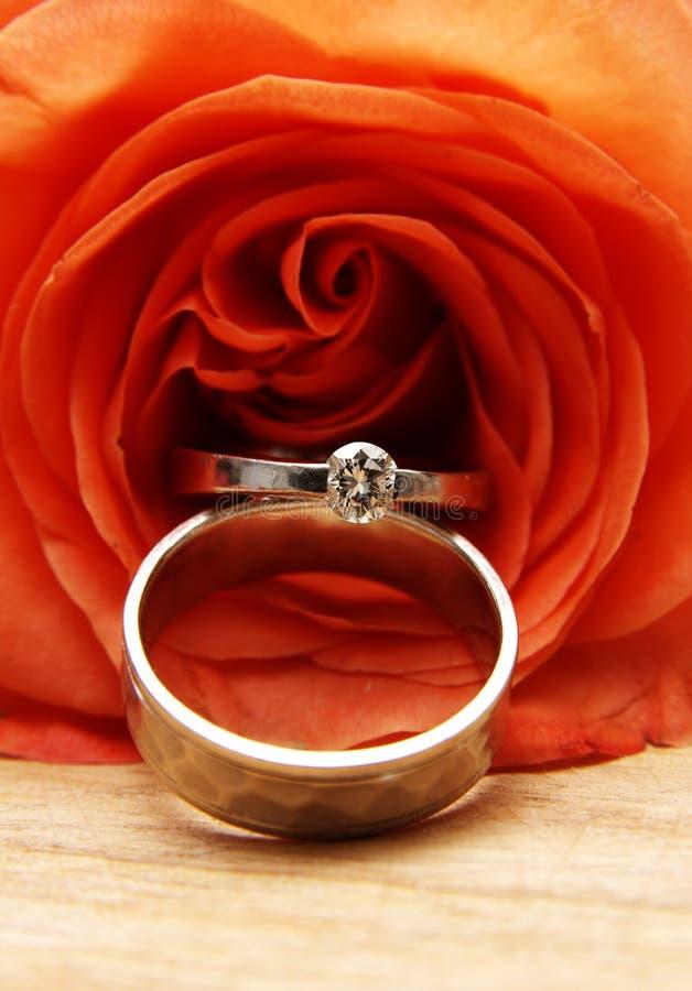 Les boucles de mariage sur un rouge ont monté photo stock