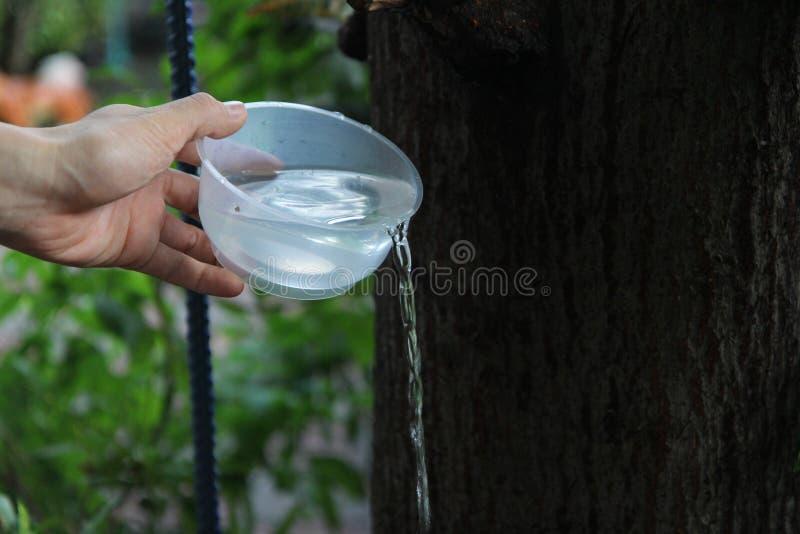 Les bouddhistes transforment le mérite, versant l'eau à partir de la bouteille en tasse, après un bon contrat et partagent la ric photo stock