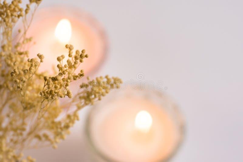 Les bougies brûlantes dans des tasses en cristal sur le fond blanc, petit ressort beige sensible fleurit, vue supérieure, defocus photographie stock