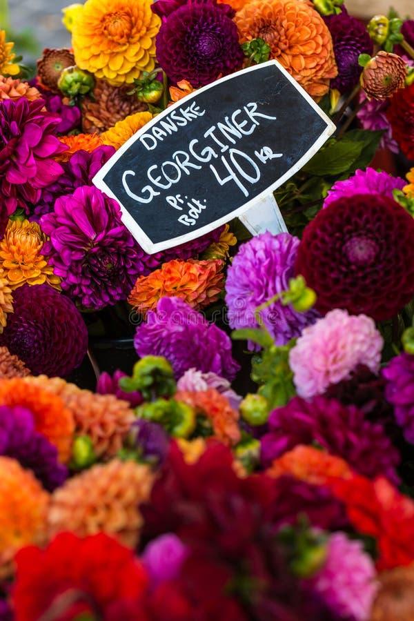 Les bouquets colorés des dahlias fleurit au marché à Copenhague, Danemark images libres de droits