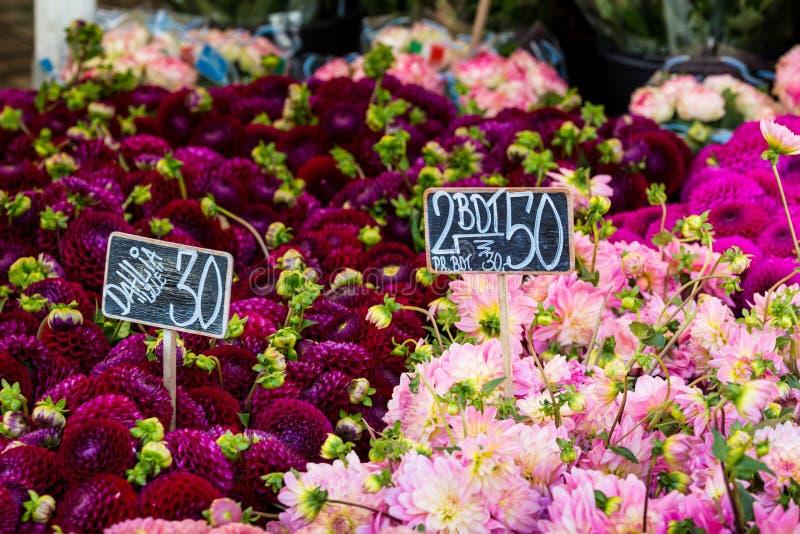 Les bouquets colorés des dahlias fleurit au marché à Copenhague, Danemark photos stock