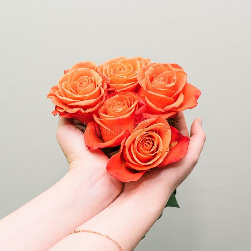 Les bourgeons roses rouges se ferment  Cinq fleurs colorées dans les mains d'une jeune fille Le concept de vendre des fleurs dans photos libres de droits