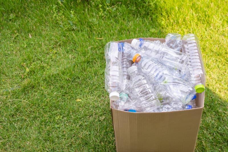 Les bouteilles en plastique dans le brun réutilisent la boîte de déchets sur l'herbe image stock