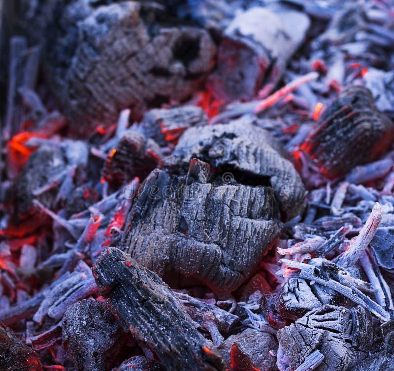 Les branches brûlent dans le gril charbons avec le feu dans le gril Saison de gril images libres de droits