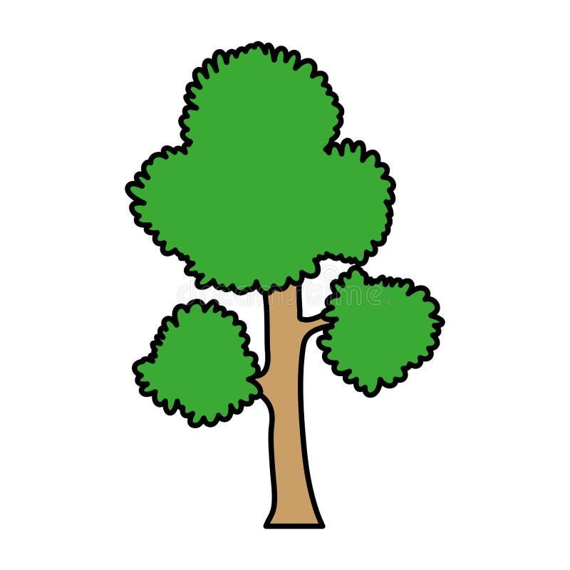 Les branches d'arbre exotiques de couleur part de la tige illustration de vecteur