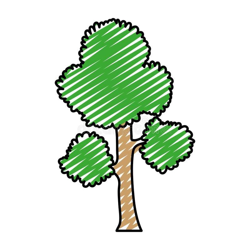 Les branches d'arbre exotiques de griffonnage part de la tige illustration de vecteur