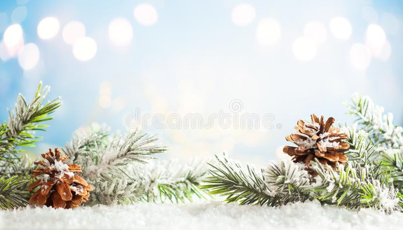 Les branches de sapin de Noël aux cônes de pin bleu flou arrière-plan Concept de Noël et d'hiver photographie stock libre de droits