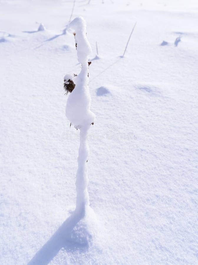 Les branches est pleine de la neige photos stock